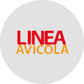 Cliente: Línea Avícola S.A.